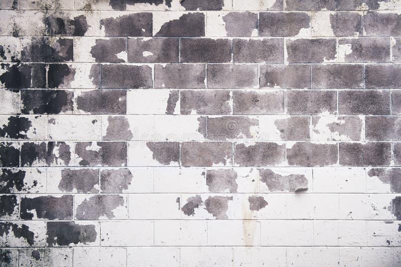 白色和灰色脏的被风化的水泥砖墙-完善的难看的东西背景 免版税图库摄影