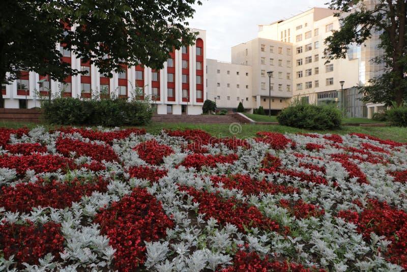 白色和红色花美丽的装饰草坪  图库摄影