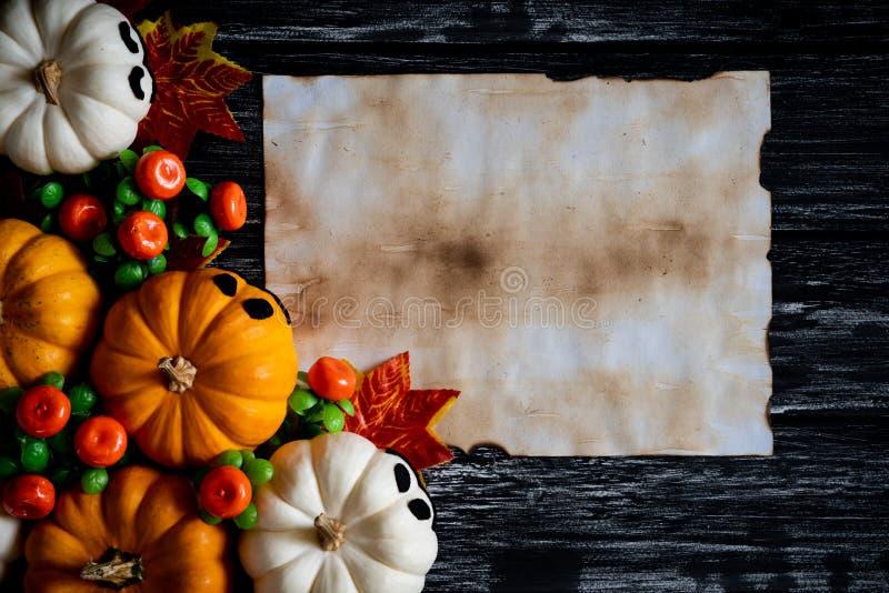 白色和黄色鬼魂南瓜顶视图与五颜六色的秋叶的 库存图片