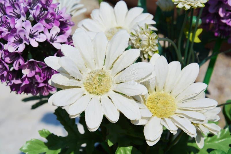白色和紫罗兰色用花装饰的背景 库存图片