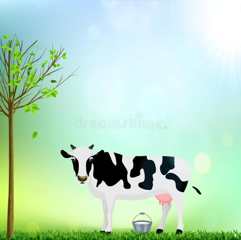 白色和黑色察觉了与桶牛奶例证的母牛 库存图片