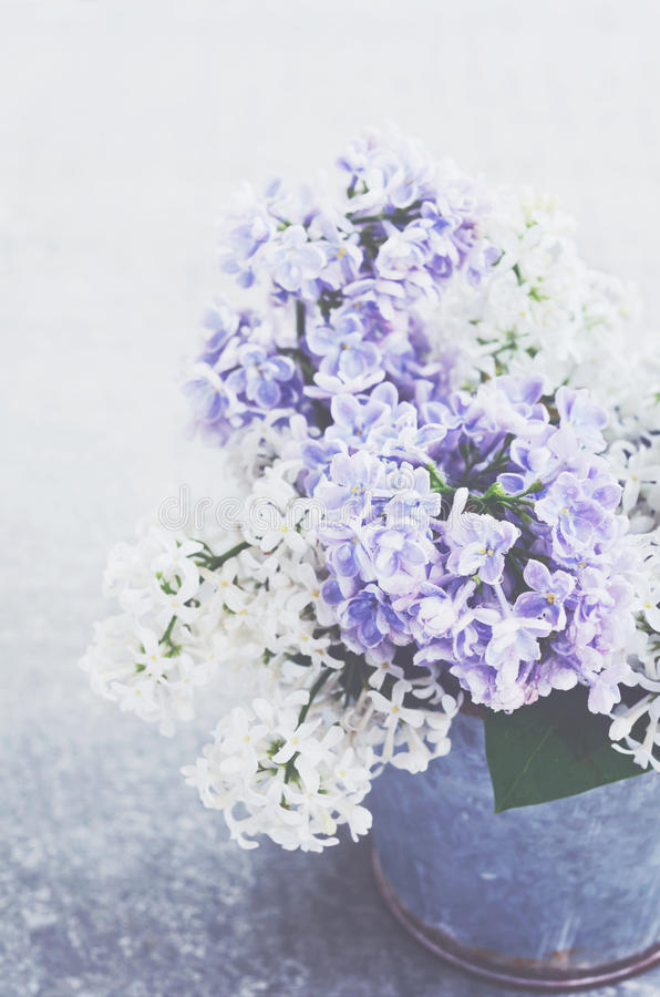 白色和紫色淡紫色花花束在金属碗的 免版税库存图片