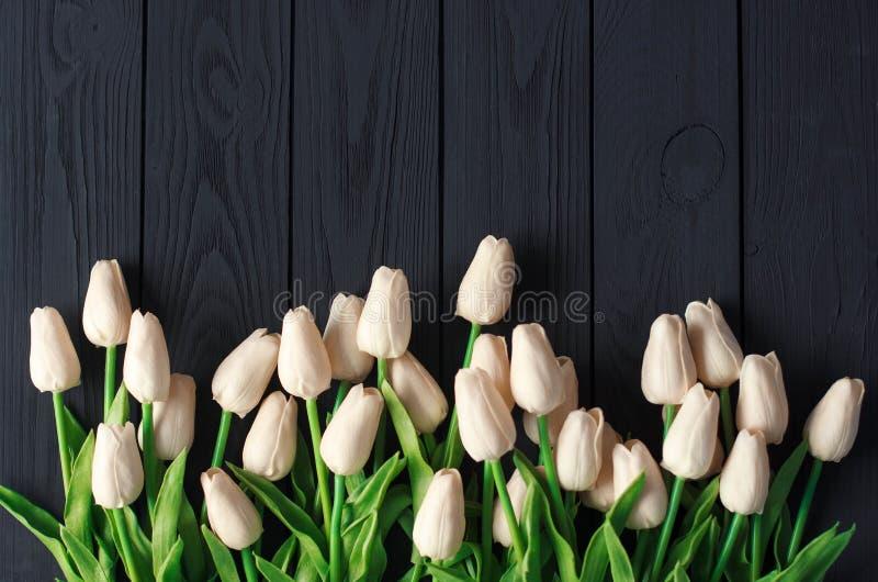 白色和biege郁金香花束,在黑木背景,平,顶视图拷贝空间 库存图片
