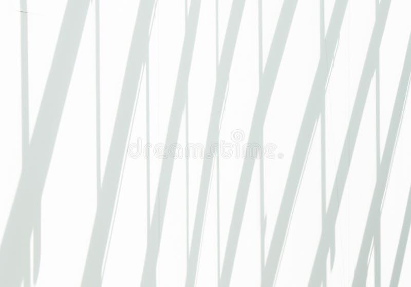 白色墙壁和树荫对此 向量例证