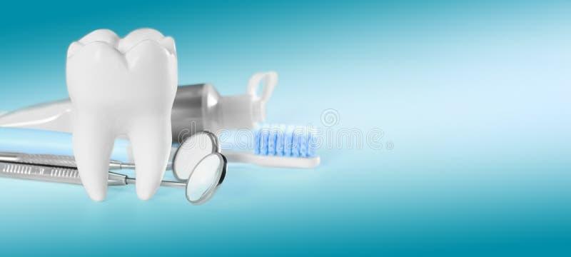 白色大健康牙和不同的工具为牙齿保护,在梯度牙齿背景 横幅大小 图库摄影