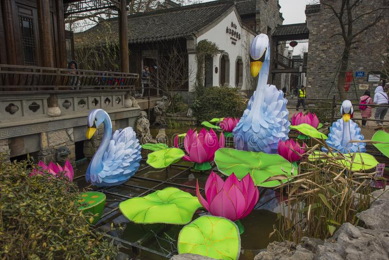 白色天鹅和莲花灯笼 免版税库存图片