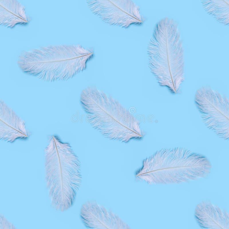 白色天鹅羽毛的无缝的样式在蓝色背景的 免版税库存照片