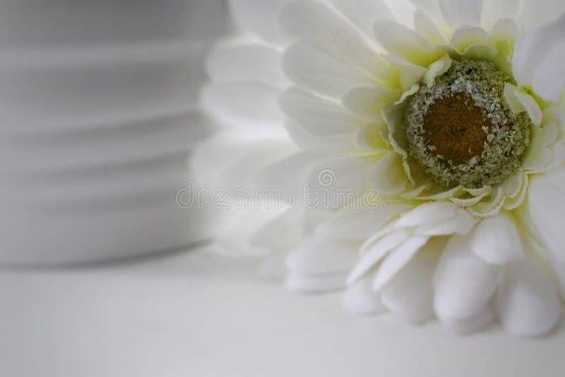 白色婚礼花装饰 库存照片