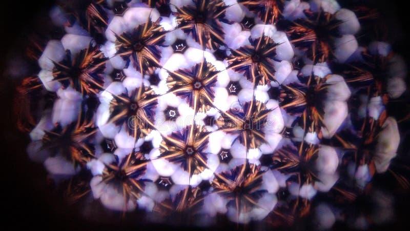 白色宇宙的反射 神秘的花束 库存图片