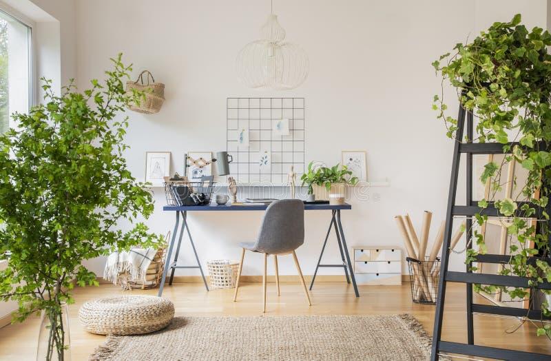 白色宽敞家庭办公室内部的植物与在地毯的蒲团在书桌的灰色椅子附近 实际照片 免版税库存图片