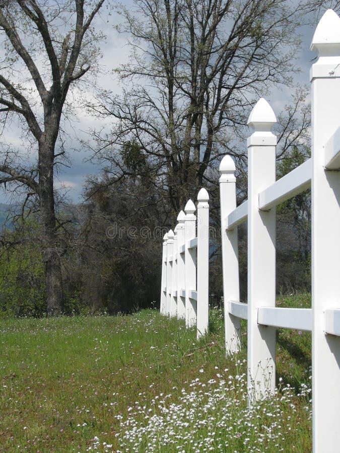 白色尖桩篱栅在开花的草甸 库存图片