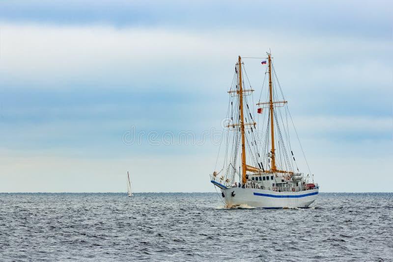 白色帆船 库存图片