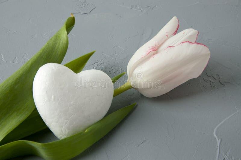 白色心脏 免版税库存图片