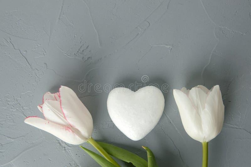 白色心脏 免版税库存照片