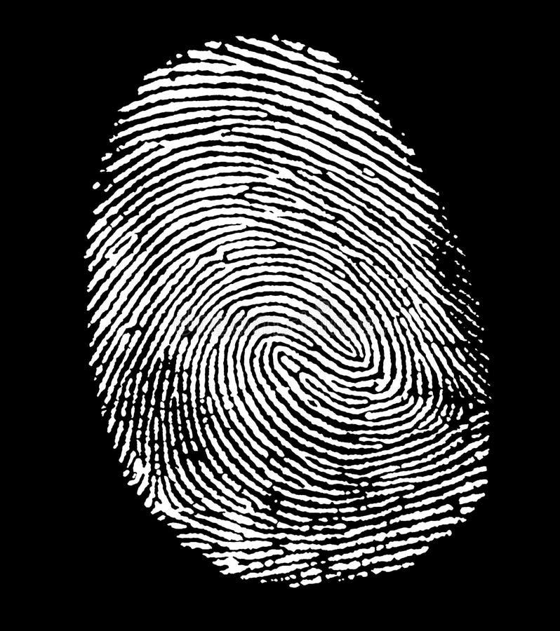 白色指纹 库存例证