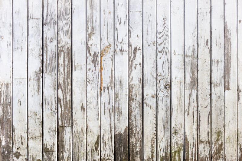 白色木纹理有自然样式背景 图库摄影