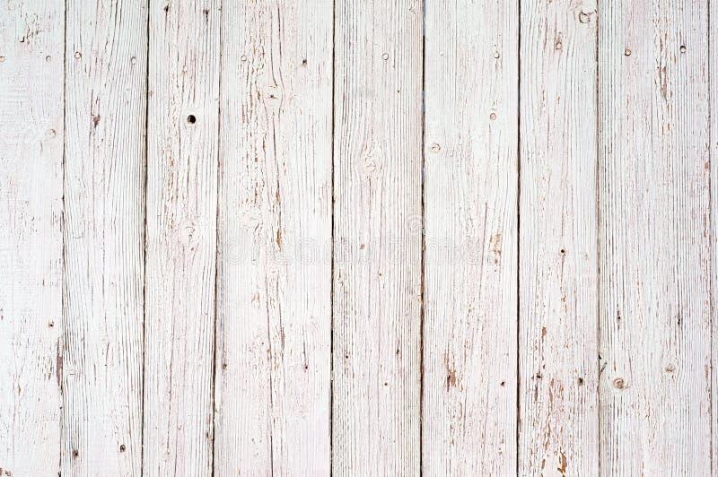 白色木纹理背景 库存照片