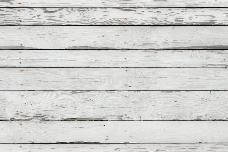 白色木纹理 库存图片