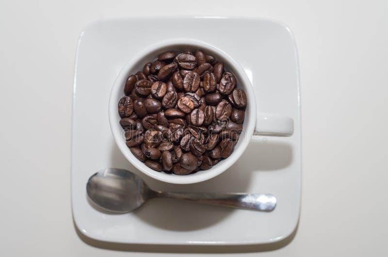 白色杯子充分在咖啡豆 免版税库存图片