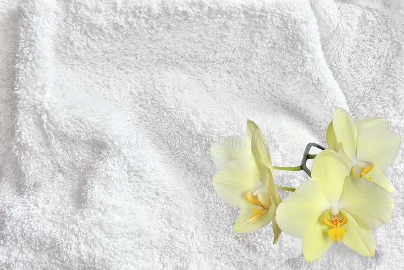 白色棉花毛巾两端有绒穗之布纹理和黄色兰花 图库摄影