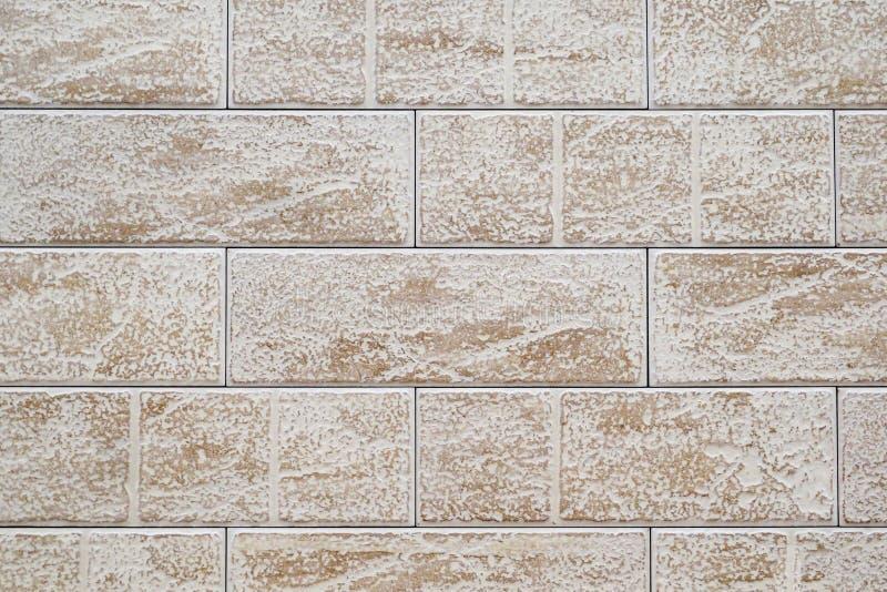 白色棕色粗砺的瓷砖墙壁  免版税图库摄影