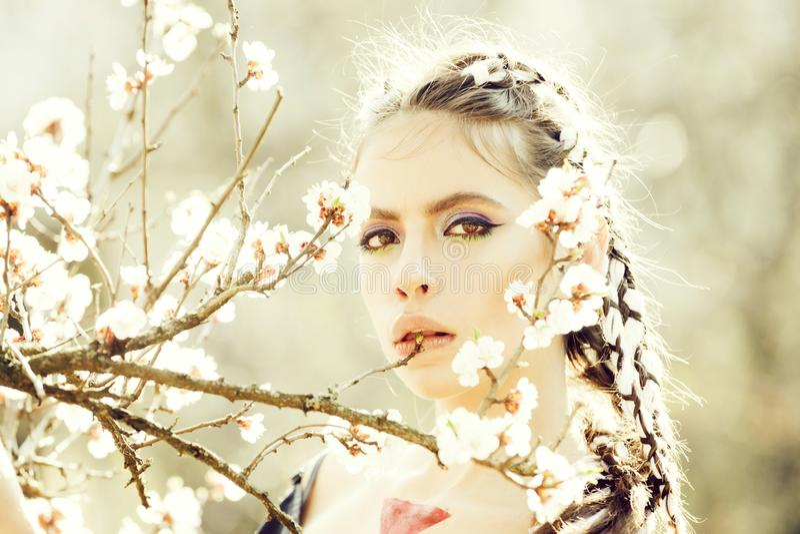 白色樱桃或杏子春天花开花的妇女 免版税库存图片