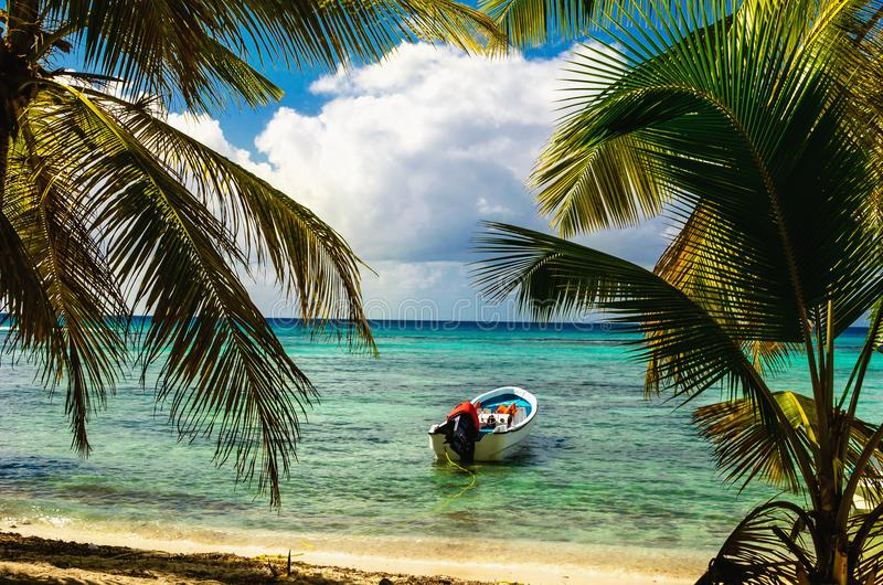 白色汽艇在与进入海,多米尼加共和国的美丽的惊人的棕榈树的异乎寻常的海岸停泊了 库存照片