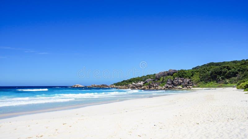 白色沙子、棕榈树、花岗岩岩石和绿松石浇灌在 库存图片