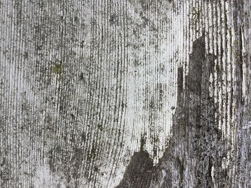 白色油漆被佩带的去老木纹理 图库摄影