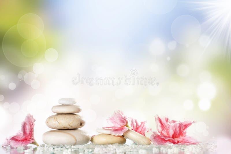 白色温泉石头和花在五颜六色的背景 库存图片