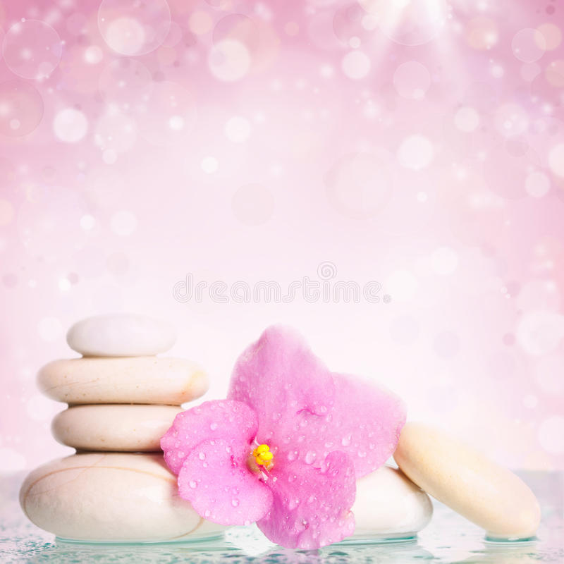 白色温泉石头和花在五颜六色的背景 免版税库存图片