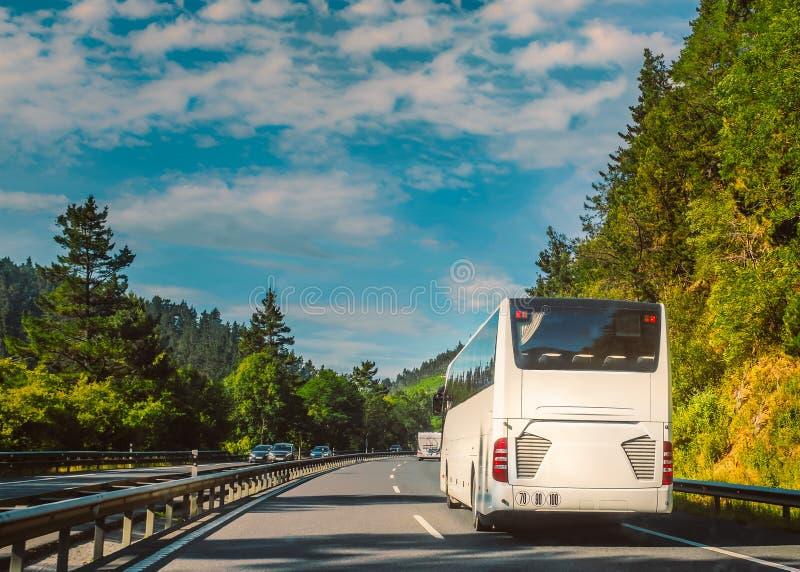 白色游览车或教练在游遍树的双线机动车路在一好日子排行了多小山乡下 图库摄影