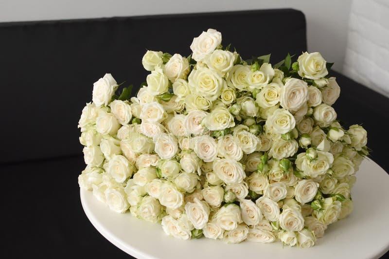 白色灌木玫瑰花束  库存照片