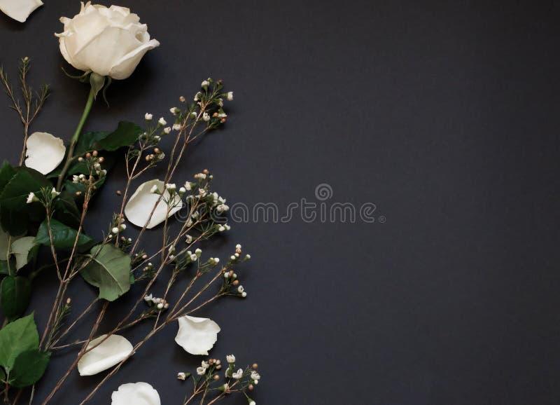 白色玫瑰和干花在黑纸背景whith拷贝空间 免版税库存图片