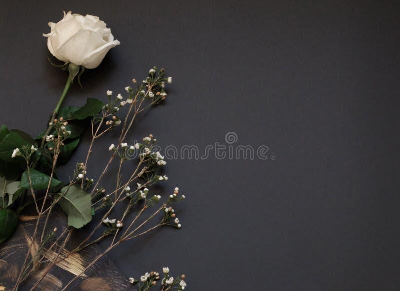 白色玫瑰和干花黑纸背景whith拷贝空间 库存图片