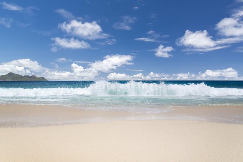 白色珊瑚海滩沙子和天蓝色印度洋。 免版税库存照片