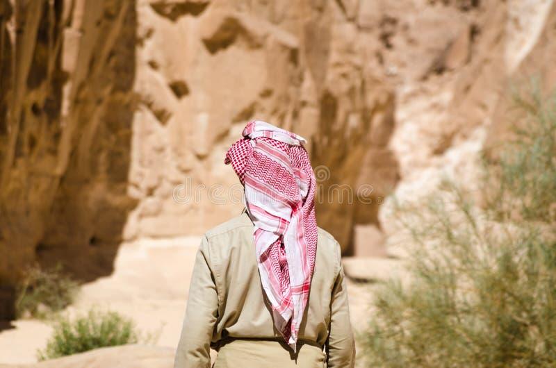白色的流浪者在峡谷进来在岩石中的沙漠在埃及宰海卜南西奈 库存图片