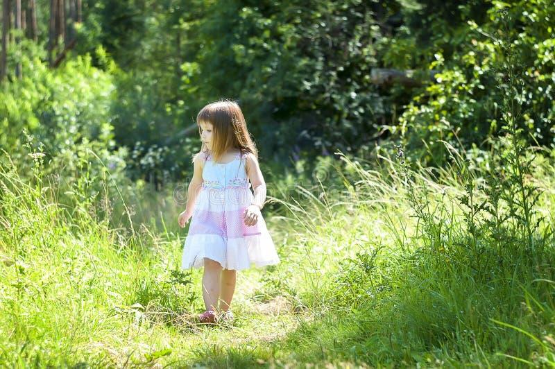 白色礼服的可爱的小女孩在森林森林若虫 晴朗的日. 幸福, 生活方式.图片