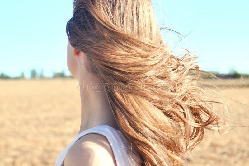白色礼服的女孩在领域站立,并且风振翼她的头发 免版税库存照片