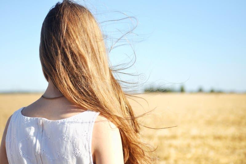 白色礼服的女孩在领域站立,并且风振翼她的头发 免版税库存图片