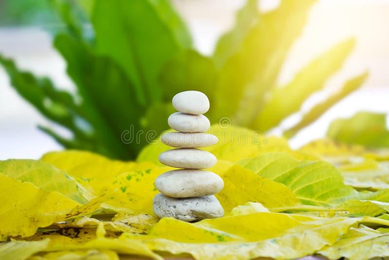 白色禅宗石头平衡在自然背景中 库存照片