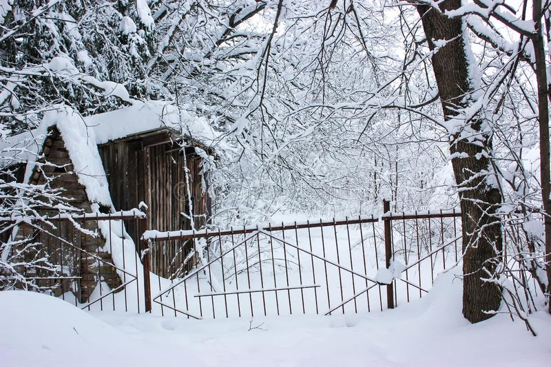 白色童话当中-冬天森林和村庄 库存图片