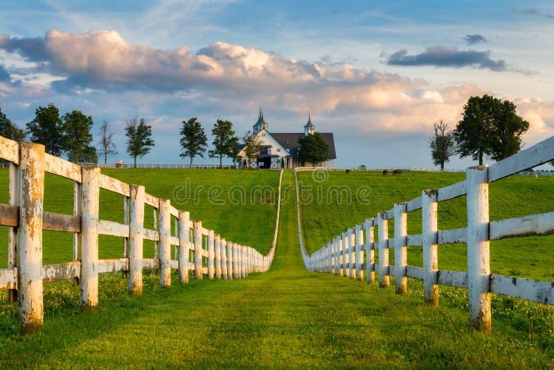 白色篱芭行和谷仓,肯塔基backroads 库存图片
