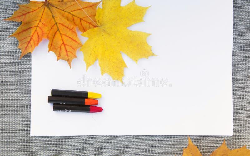 白色纸片与秋天枫叶和色的铅笔的 它在灰色说谎 库存照片