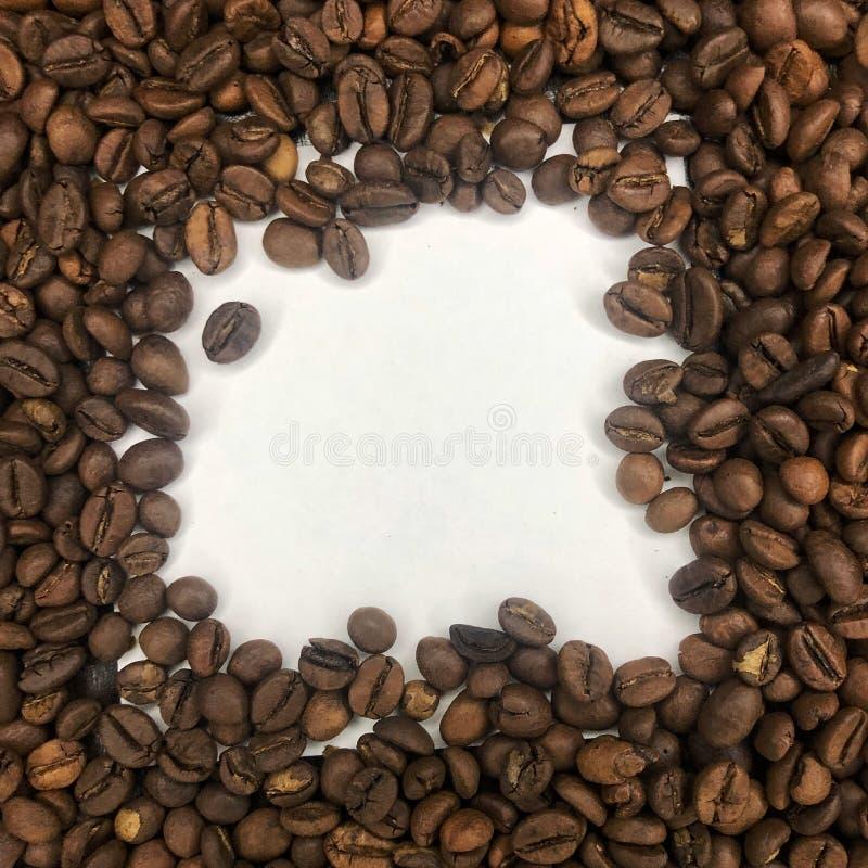 白色背景上的咖啡谷 库存图片
