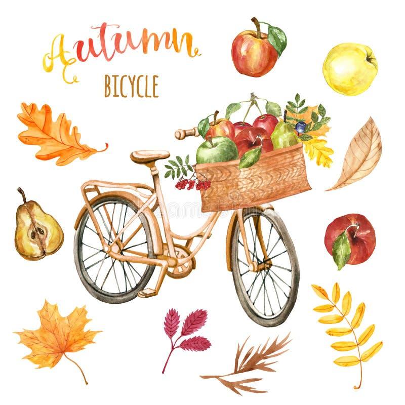 白色背景中带篮子、苹果和树叶的秋橙色自行车 水彩秋色自行车,独立 库存例证