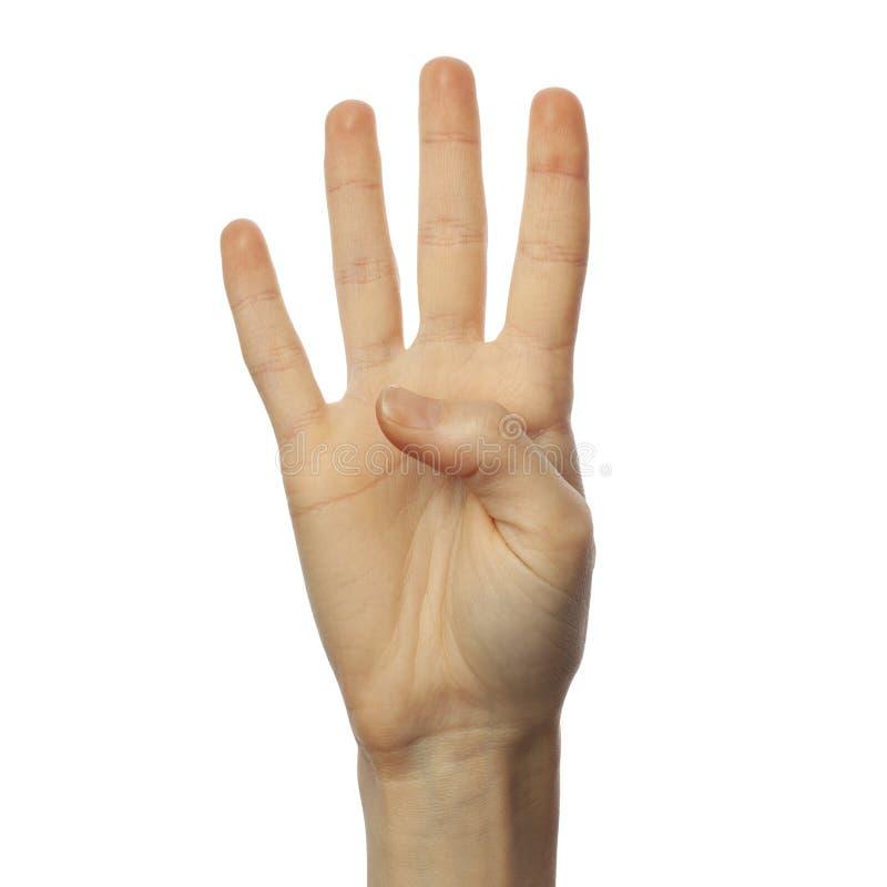 白色背景中手语中手指拼写数字4 ASL概念 免版税库存照片