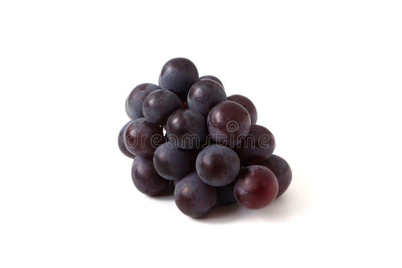 白色背景中突显的蓝色葡萄 库存图片