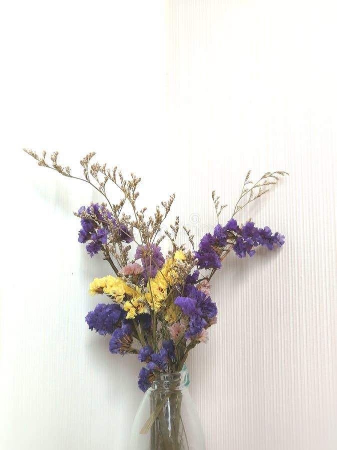 白色背景的草瓶里色彩鲜艳的干花。白色背景草瓶彩色干花 库存图片