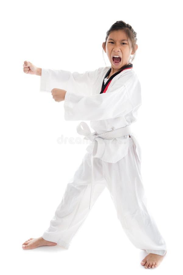 白色背景的跆拳道亚裔女孩 库存图片